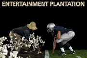 Entertainment Plantation Video